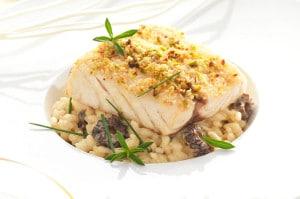 Recette filet de maigre fine chapelure de pistache et risotto aux morilles