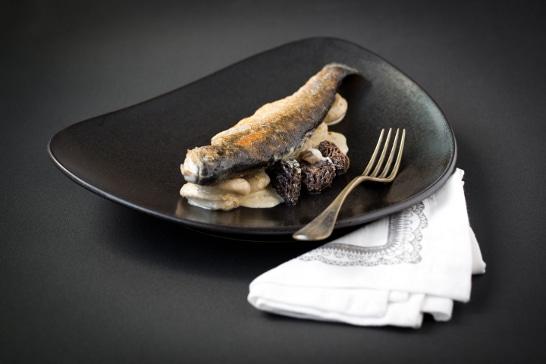 Ateier Créatif - Truite portion au boudin blanc et aux morilles